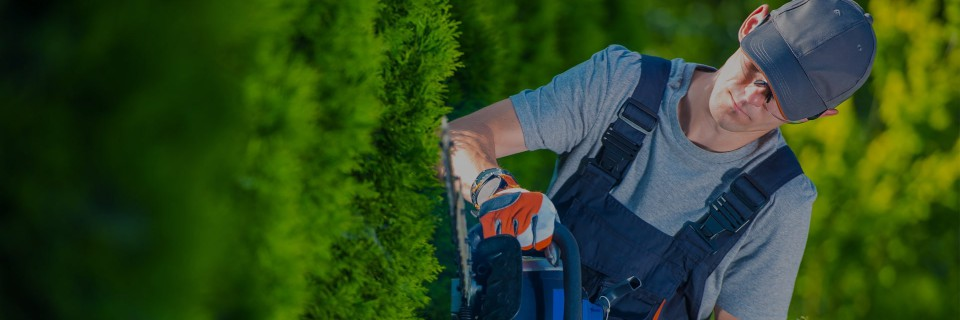 Het onderhoud van uw tuin en gazon is onze passie